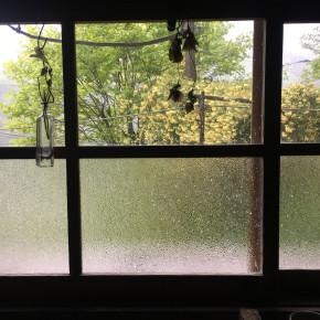 20210413:愉英雨