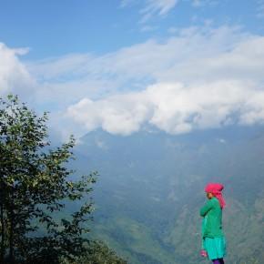 Himalayan Colors